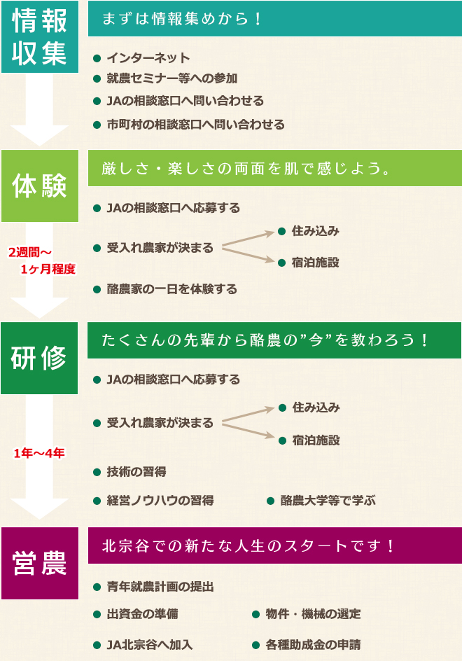 page-kitasoya-shinki_03