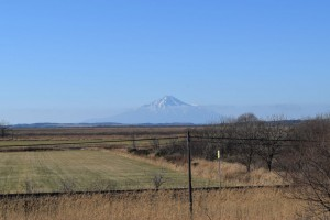 豊富町 国道40号線から見える利尻富士
