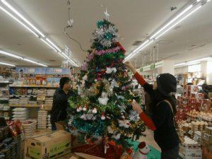 クリスマスツリー登場!!