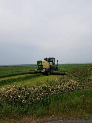 一番草収穫スタート